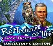 Отражения жизни: дерево снов. Коллекционное издание